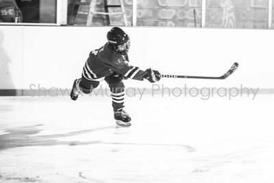Snowbelt Hockey Tournament_012613_SH_1904