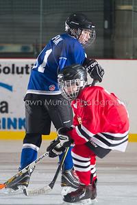 Snowbelt Hockey Tournament_012613_SH_1915