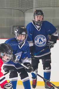 Snowbelt Hockey Tournament_012613_SH_1923