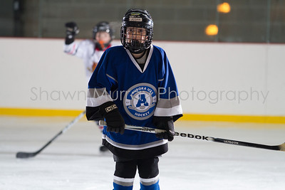 Snowbelt Hockey Tournament_012613_SH_1033