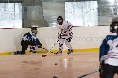 Snowbelt Hockey Tournament_012613_SM_2107