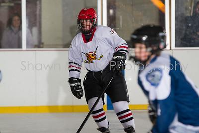 Snowbelt Hockey Tournament_012613_SM_2116