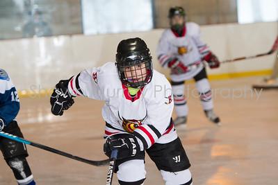 Snowbelt Hockey Tournament_012613_SM_2126