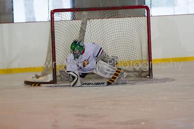 Snowbelt Hockey Tournament_012613_SM_2125