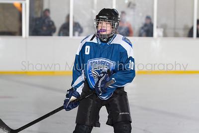 Snowbelt Hockey Tournament_012613_SM_2112