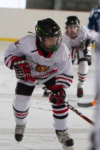 Snowbelt Hockey Tournament_012613_SM_2130