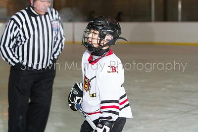 Snowbelt Hockey Tournament_012613_SM_2135