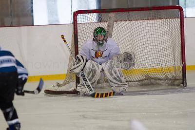 Snowbelt Hockey Tournament_012613_SM_2117