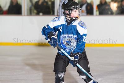 Snowbelt Hockey Tournament_012613_SM_2114