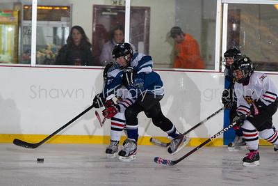 Snowbelt Hockey Tournament_012613_SM_2102