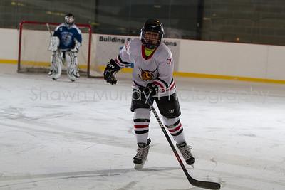 Snowbelt Hockey Tournament_012613_SM_2131