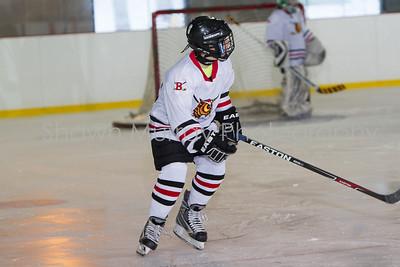 Snowbelt Hockey Tournament_012613_SM_2124