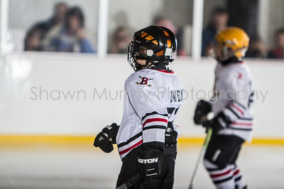 Snowbelt Hockey Tournament_012713_SM_3378