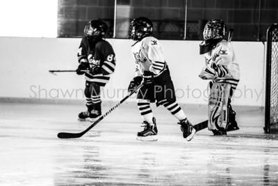 Snowbelt Hockey Tournament_012713_SM_3359