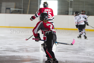 Snowbelt Hockey Tournament_012713_SM_3358