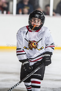 Snowbelt Hockey Tournament_012713_SM_3379