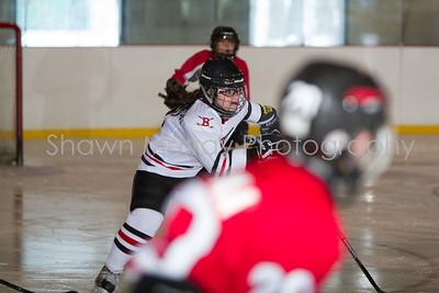 Snowbelt Hockey Tournament_012713_SM_3371