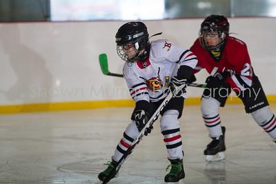 Snowbelt Hockey Tournament_012713_SM_3370