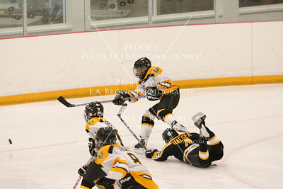 Bruins vs Perinton Game 19