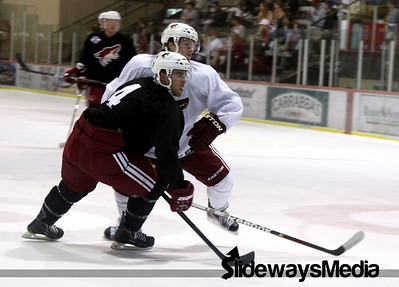 Coyotes Prospect Camp 2012