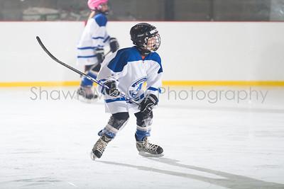 Snowbelt Hockey Tournament_012713_SH_2319