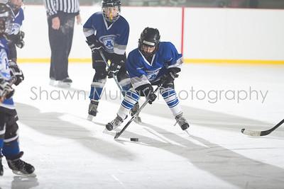 Snowbelt Hockey Tournament_012713_SH_2343