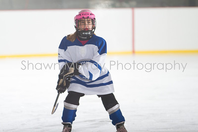 Snowbelt Hockey Tournament_012713_SH_2312