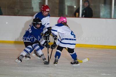 Snowbelt Hockey Tournament_012713_SH_2346