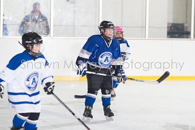 Snowbelt Hockey Tournament_012713_SH_2317