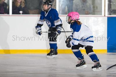 Snowbelt Hockey Tournament_012713_SH_2323