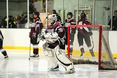 2013/2014 - WA Girls Hockey