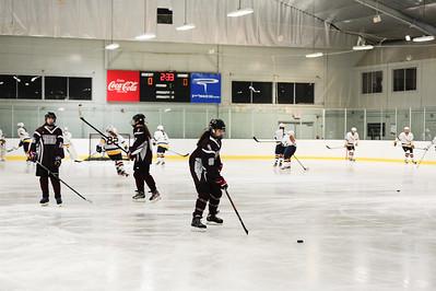 2014-2015 WA Girls Hockey