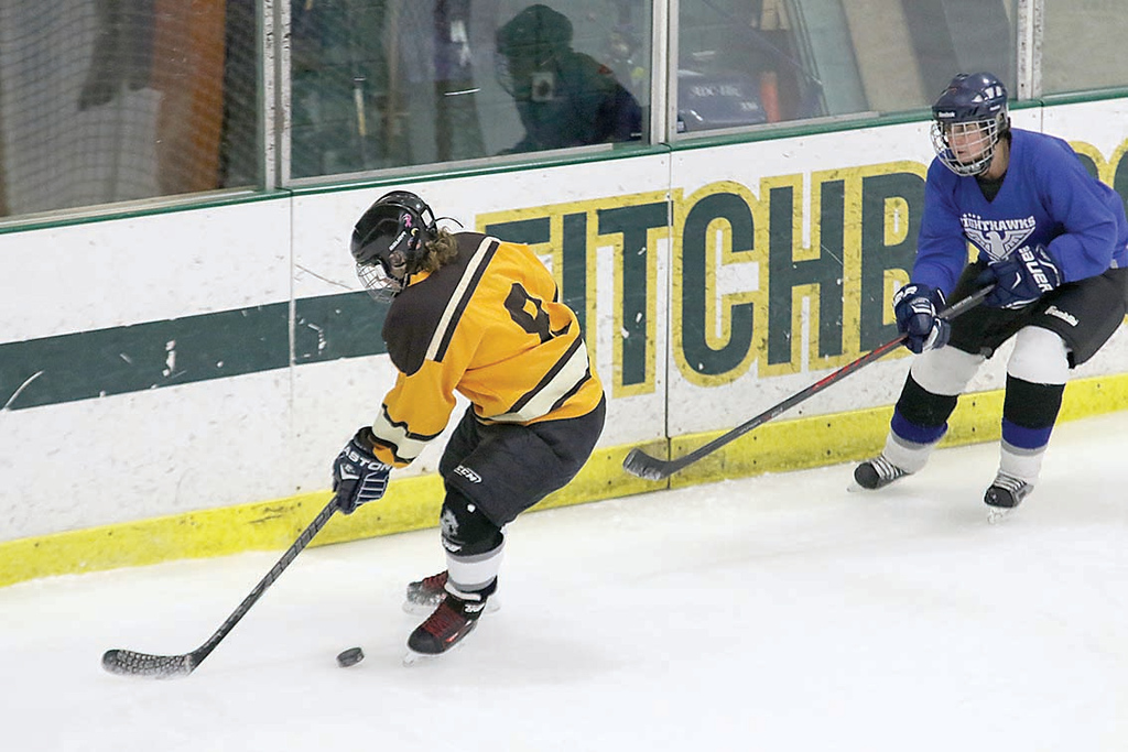 . FoK player Gloria Verrill gets control of the puck at the Fitchburg State University\'s Wallace Civic Center during the St. Valentine\'s Day Have a Heart Hockey Tournament. All proceeds will go to Luk, Inc. and the Shelly L\'Ecuyer Scholarship Fund. SENTINEL & ENTERPRISE/JOHN LOVE