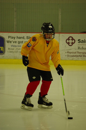 Hockey Training 2010
