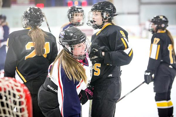MayPort Ice Dawgs 19U girls vs Hazen 11-28-15