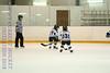 Leafs Blades-01
