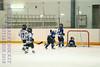 Leafs Blades-06