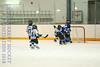 Leafs Blades-05