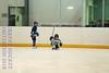 Leafs Blades-04
