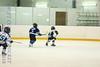 Leafs Blades-07