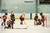 Leafs Blades-02