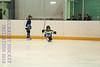 Leafs Blades-03