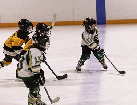 11FVEG1 Bruins vs GBG-65