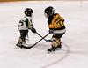 11FVEG1 Bruins vs GBG-40