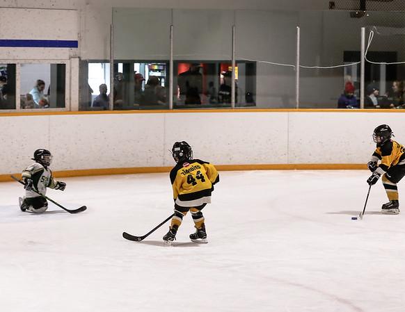 11FVEG1 Bruins vs GBG-44