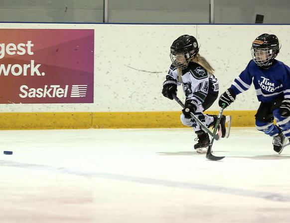 12FVWG2 Leafs vs KLP-29