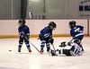 12FVWG2 Leafs vs KLP-20