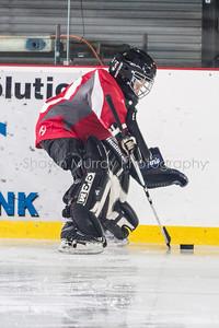 Snowbelt Hockey Tournament_012613_SH_1733