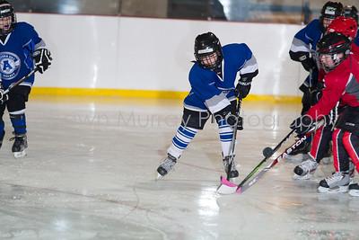Snowbelt Hockey Tournament_012613_SH_1714