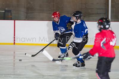 Snowbelt Hockey Tournament_012613_SH_1299